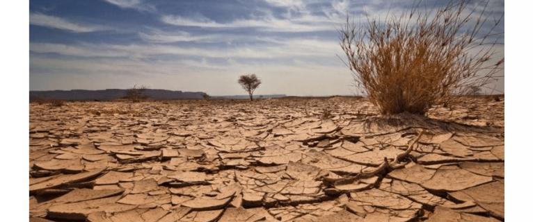 İklim değişikliği çatışmaları artırabilir