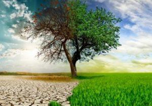 """Avustralya, """"net sıfır"""" karbon emisyonu hedefine 2050'de ulaşmayı planlıyor"""